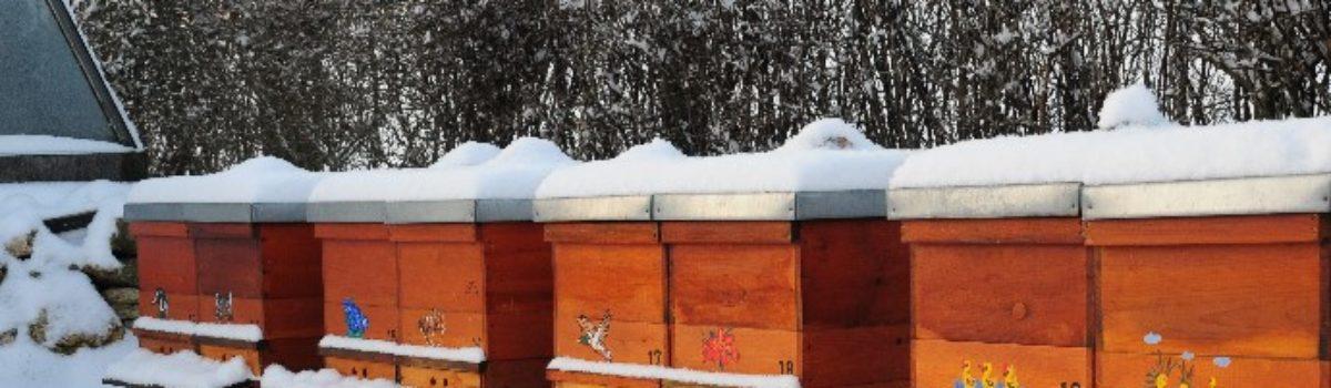 Der Bienenzuchtverein Amberg e.V. wünscht frohe Festtage und ein glückliches Neues Jahr 2019